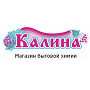 "Разработка сайта Интернет-магазин ""Калина"""
